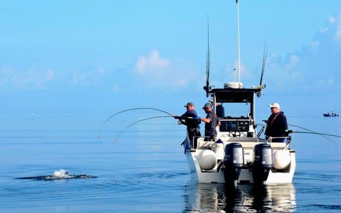 Langara Island Fishing is non stop!