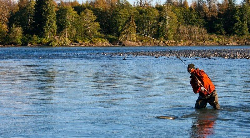 Skeena Steelhead Fishing BC