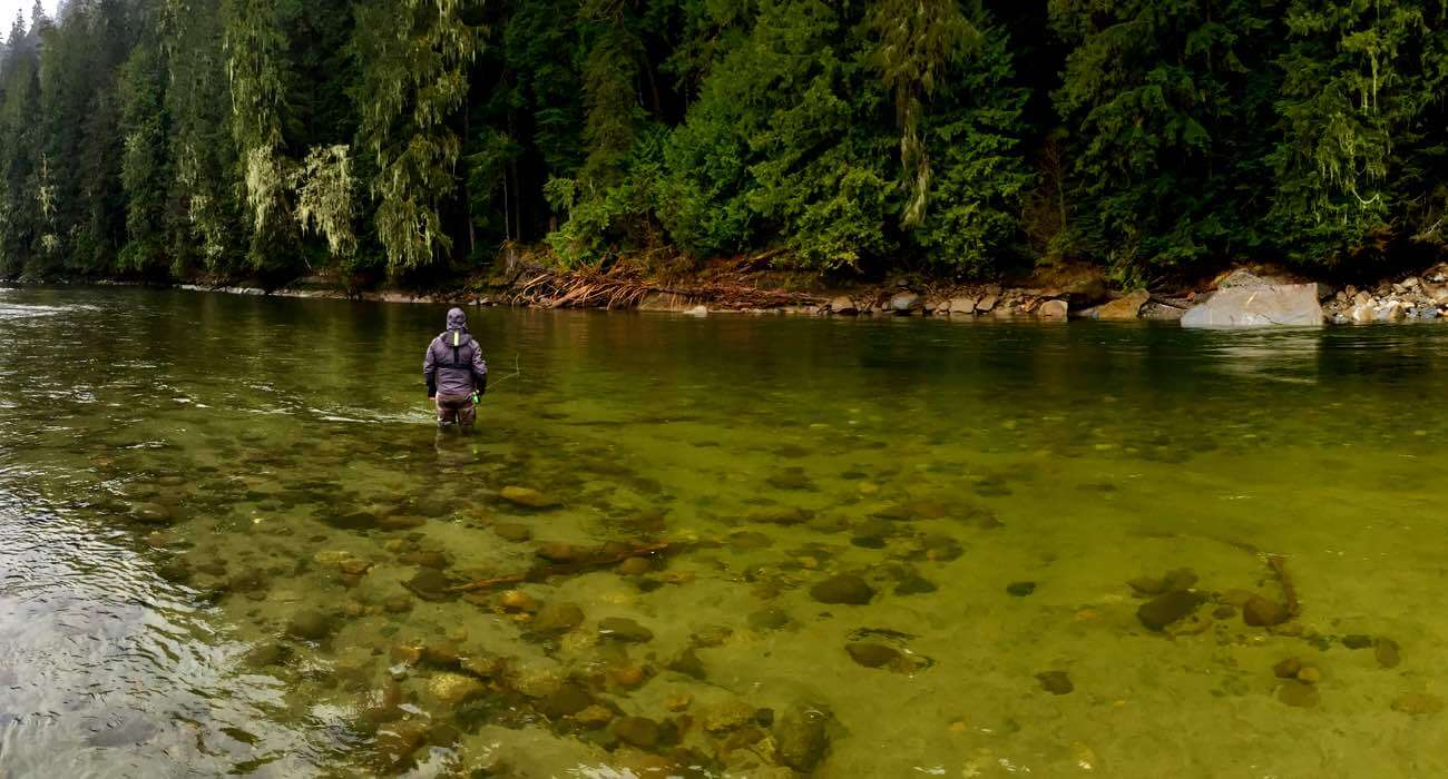 Fishing in vancouver bc check out the top vancouver for Fly fishing vacation packages