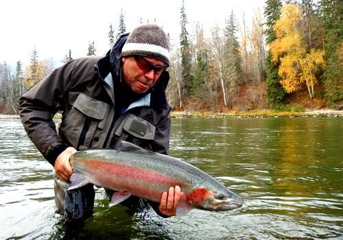 Bc steelhead fishing info tips on when where for Steelhead fishing tips