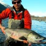Fall fly fishing BC