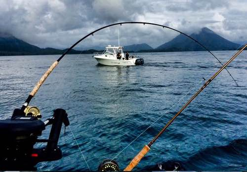June fishing in bc best options for bc fishing trips in june for Best fishing vacations