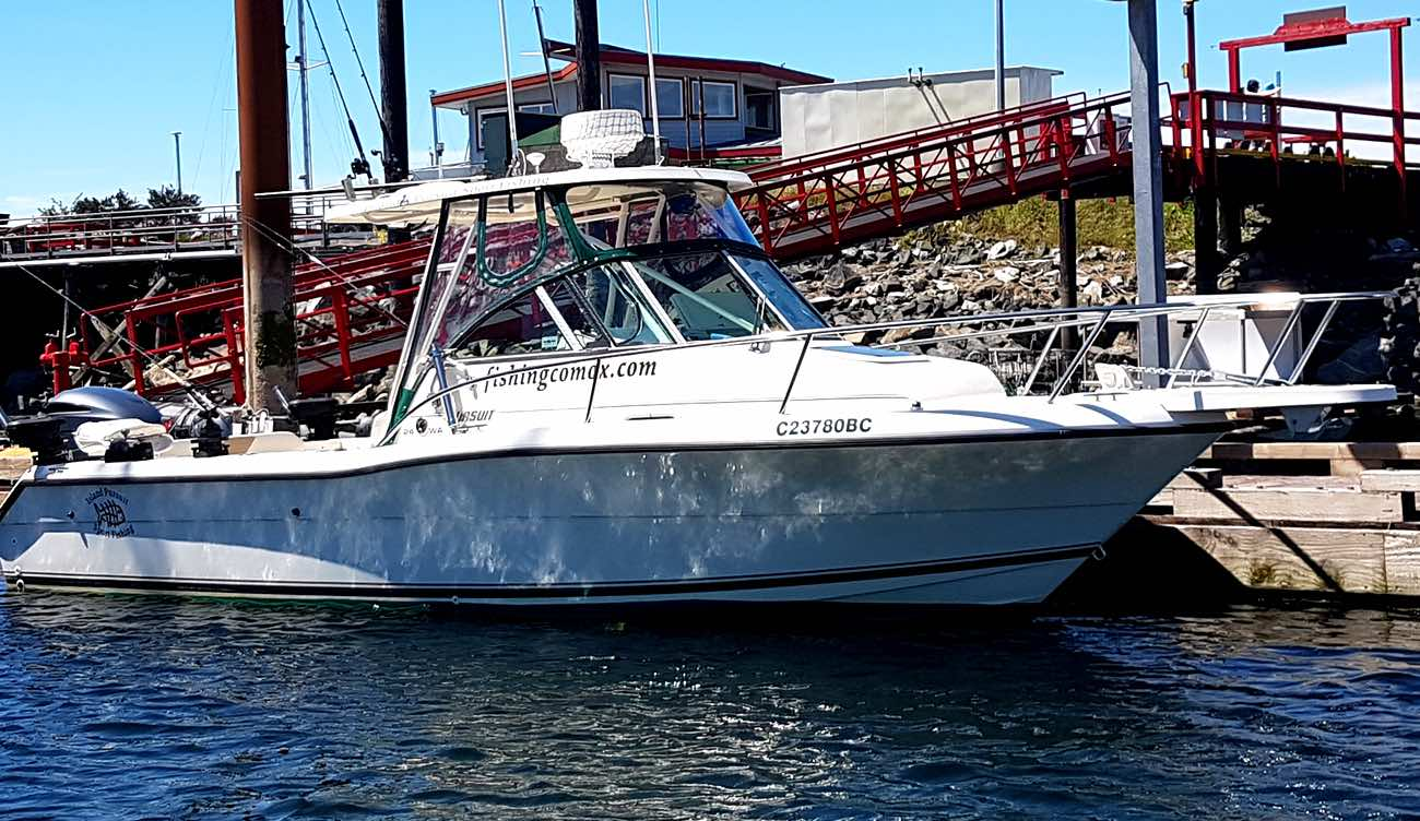 Island pursuit sport fishing comox fishing charter for Sport fishing charters
