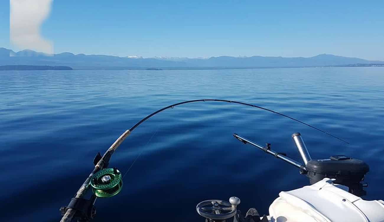 comox fishing
