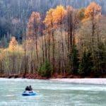 Fall Salmon Fishing BC