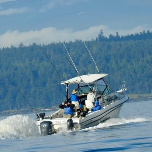 I'M JUST LOOKING FOR A DAY TRIP SALMON CHARTER
