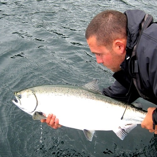 Best Times for Fishing in BC | A Montly Report of Awesome BC