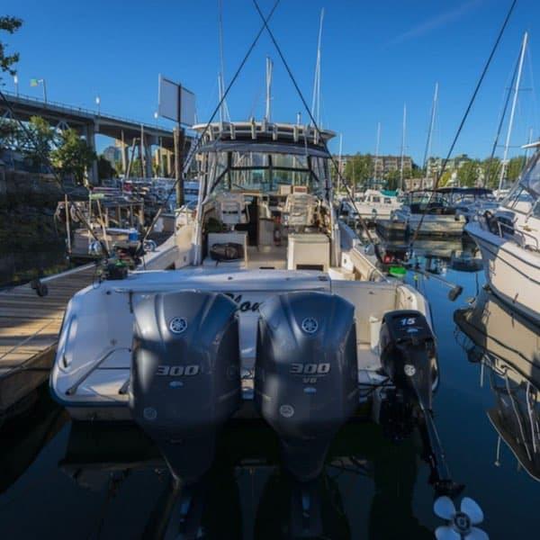Fun Salmon Fishing Charters in Vancouver BC