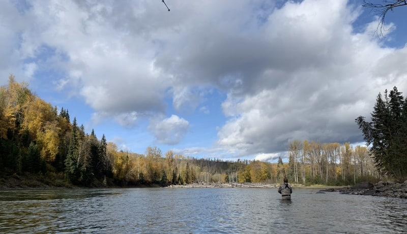 Bulkley River Fishing