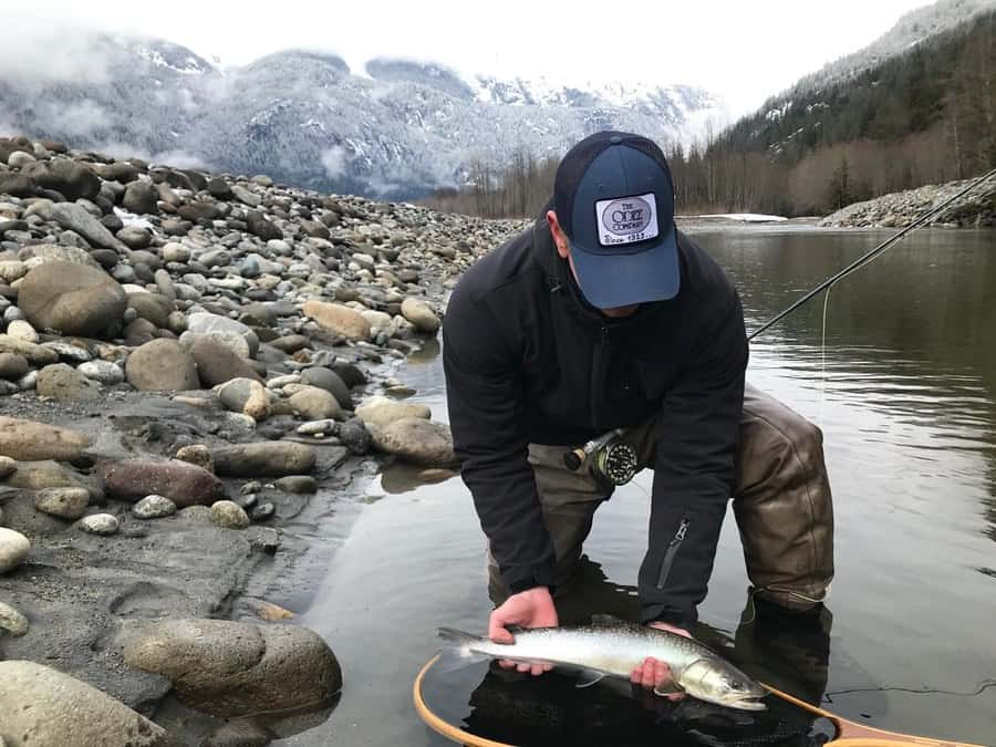 Bull Trout Fishing info